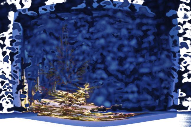 sapin bleu dominus